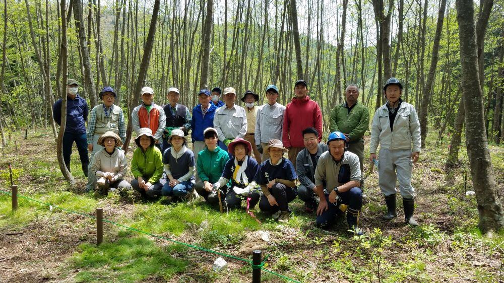 クロモジ植樹210509a.jpg